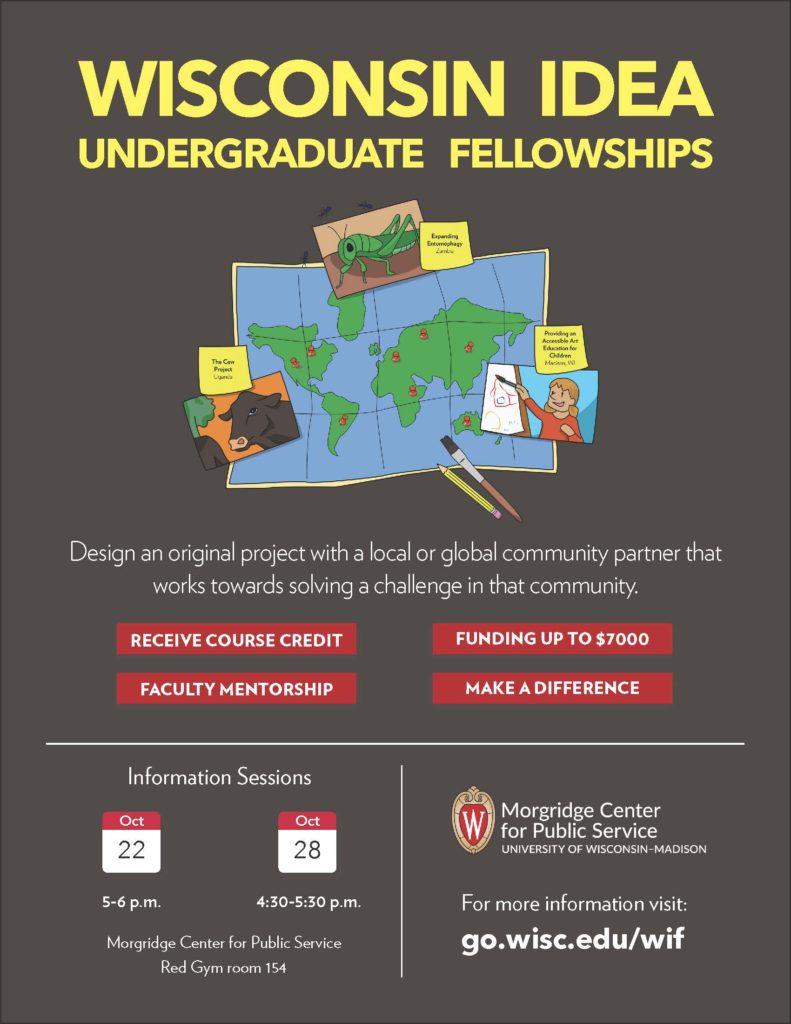 Undergraduate Fellowship flyer