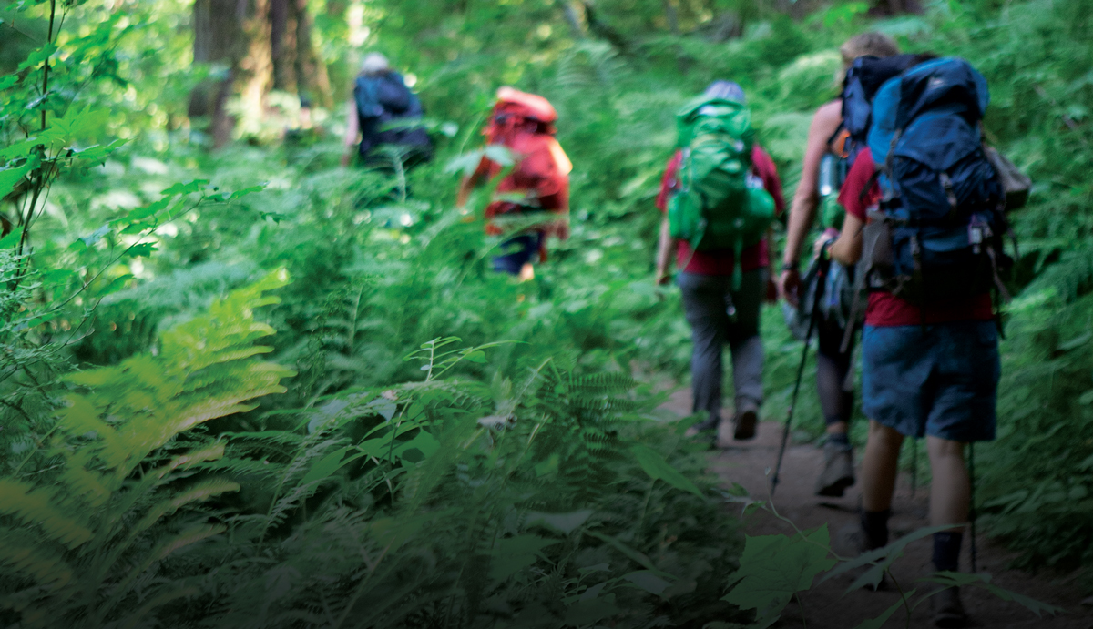 Photo of young backpackers walking away through the woods.